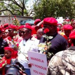 Is The Attack On Nelson Mandela's Legacy By Julius Malema A Plot By Whites?
