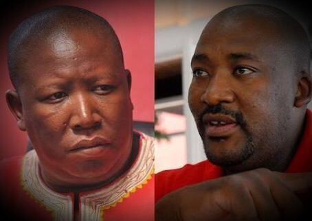 Malema never wanted to remove Trollip, his target was McKenzie