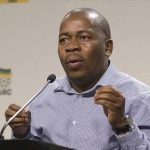 Mzwandile Masina's decision to expropriate land in Ekurhuleni is short term