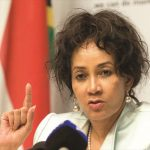 The enemy is opposing Lindiwe Sisulu